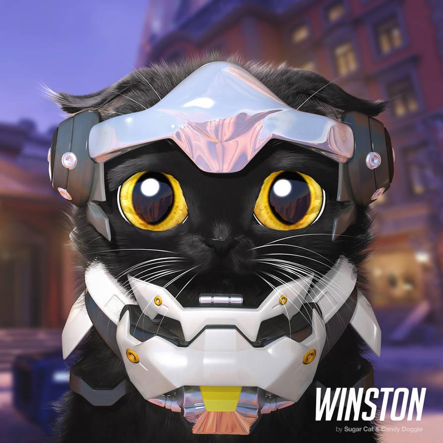 Winston cat by sugarcat-candydoggie