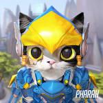 Pharah cat