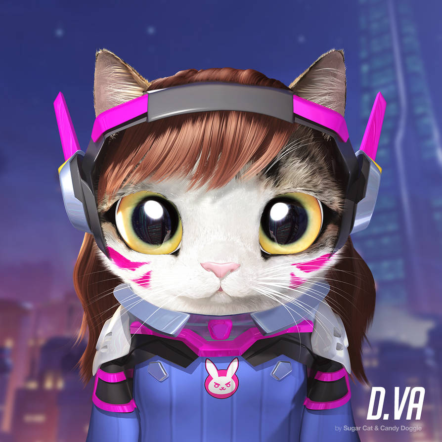 D.va cat by sugarcat-candydoggie