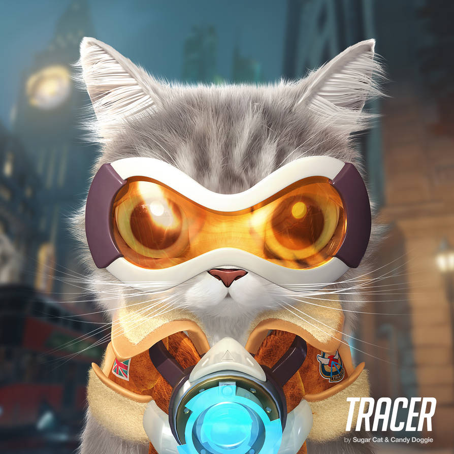 Tracer cat by sugarcat-candydoggie