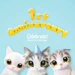 Sugar Cat's 1st Anniversary