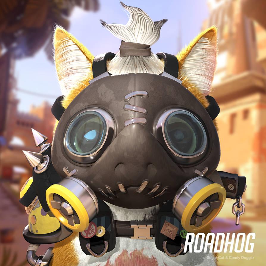 Roadhog cat by sugarcat-candydoggie