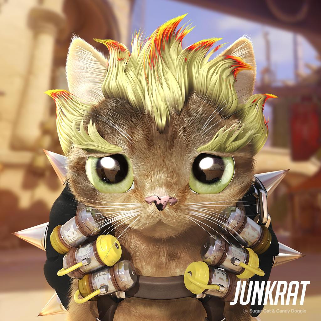 Junkrat cat