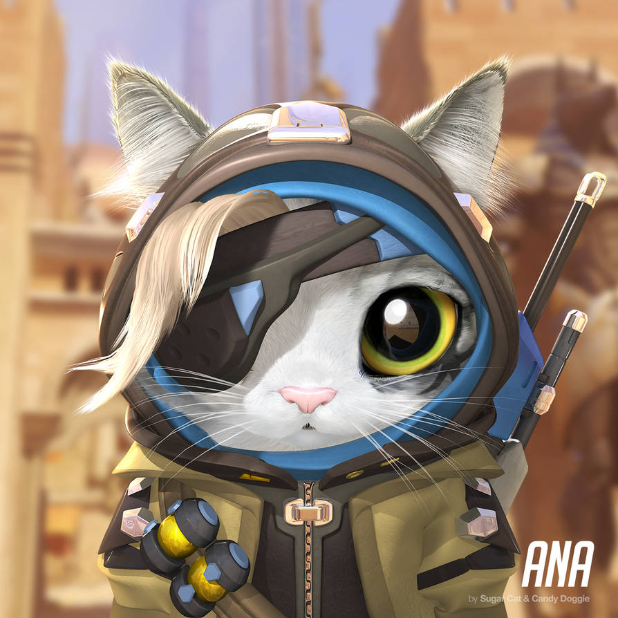 Ana cat by sugarcat-candydoggie