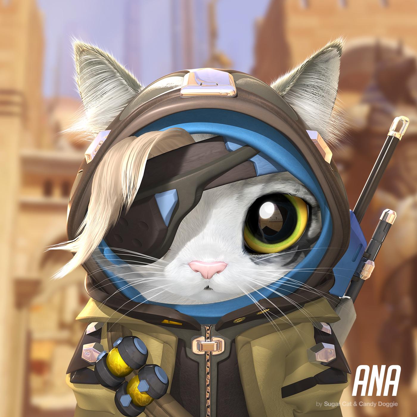 Ana cat