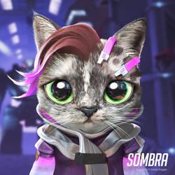 Sombra cat
