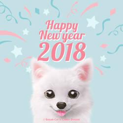HAPPY NEW YAER 2018 : Dubu