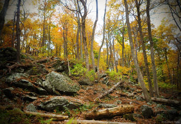 Rocky hill by snaphappy101