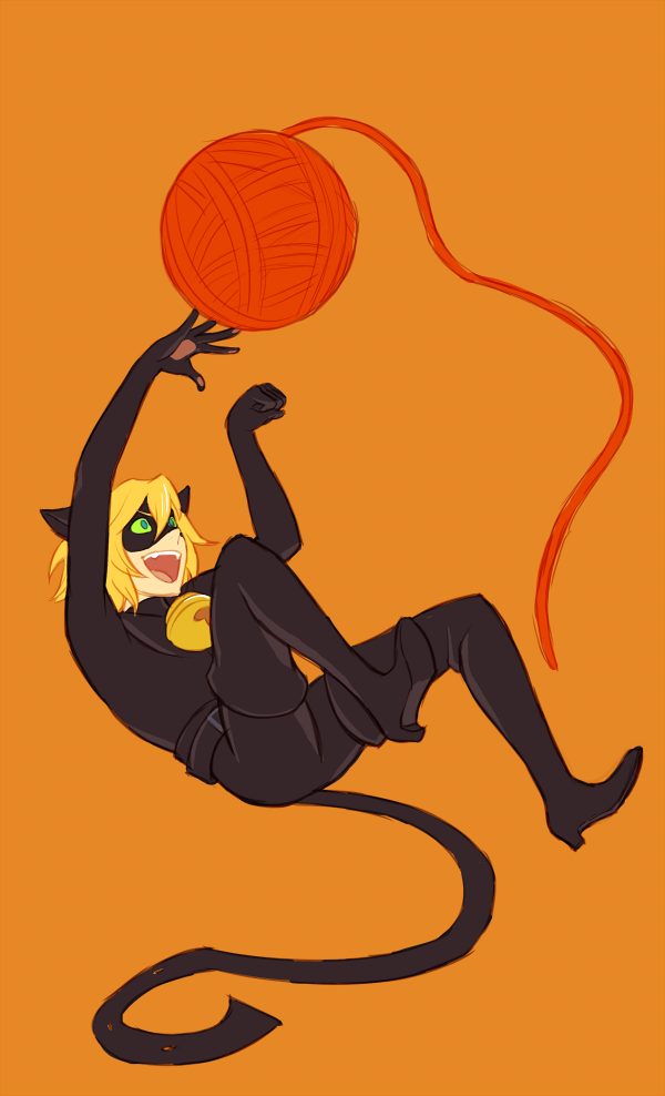 Miraculous Lady Bug - Cat Noir by rasenth