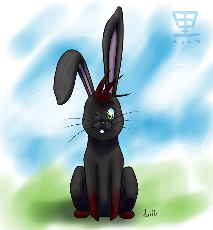 Kuroi bunny by Akeudi