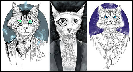 Three cats in fancy clothes