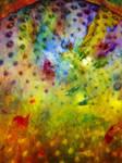 Colour Creation 16