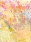 Colour Pastel 12