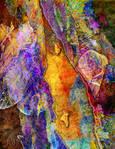 Colour Creation 142