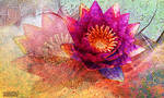 Waterlily in violet by Tackon