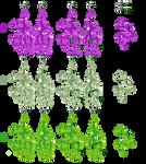 Goopfreak variants