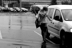 It has been raining by coloriatempera