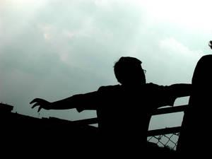 .+fly away+.
