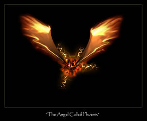 They called the Angel Phoenix by fearful-toxicin