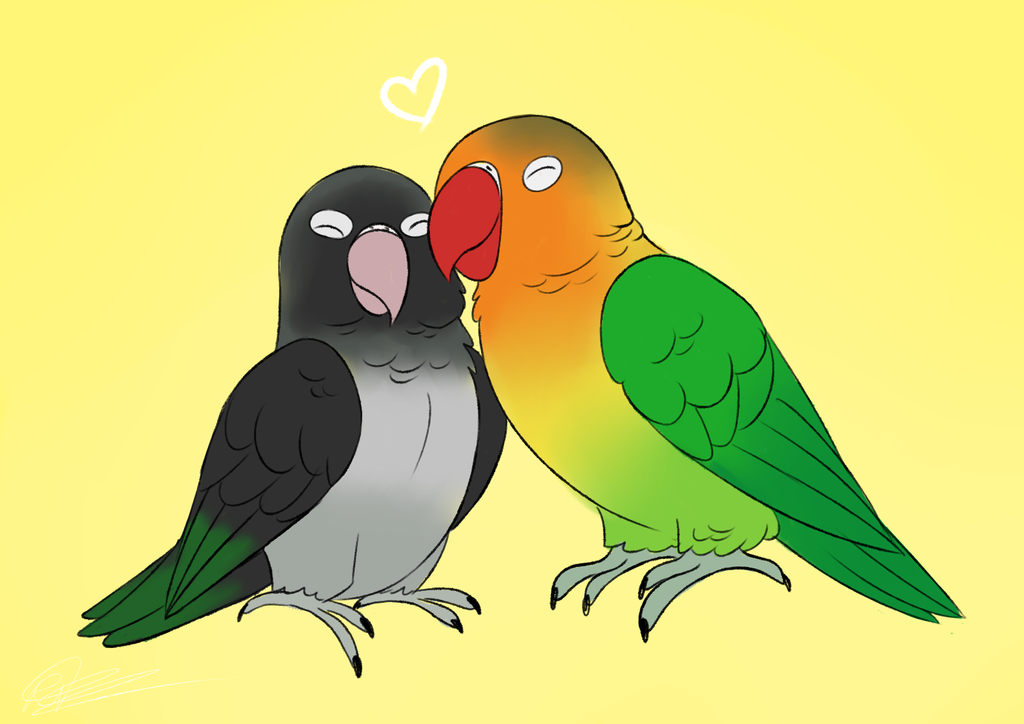 Lovebirds by Asp3ll