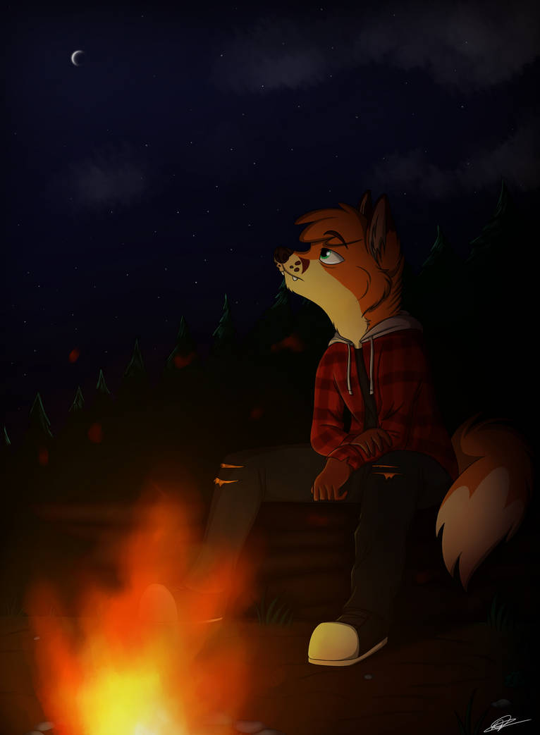 Under the Stars by Pumpkin-Paw