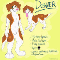 New Denver Reference 2019