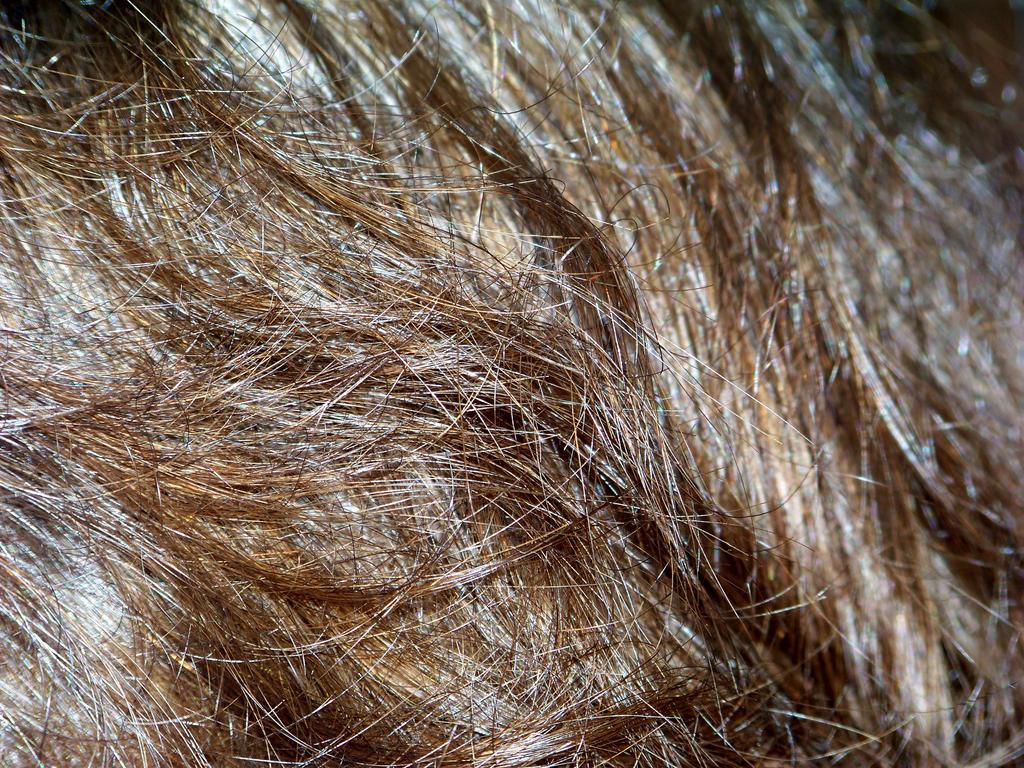 Hair by DegraHuma-Stock