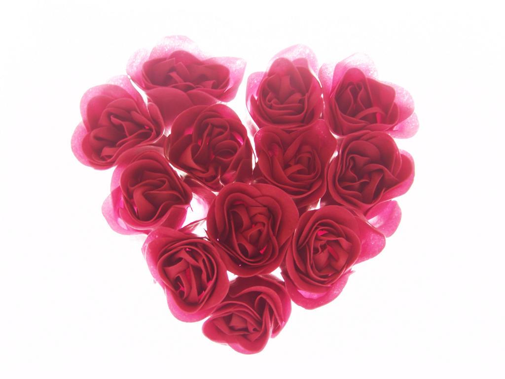 Heart Flower by DegraHuma Stock on DeviantArt