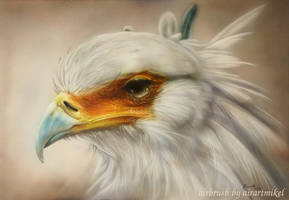 Secretarybird by airartmikel