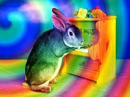 Rainbow bunny..... by KingOfTheWolvez