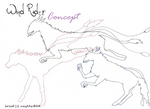 Wind Rider concept