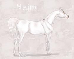 Najm - LEASED by Meykka