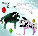 WindRider Breedsheet