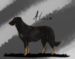 Alixia
