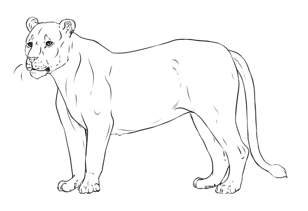 Lioness lineart by meykka on deviantart for Lioness coloring pages