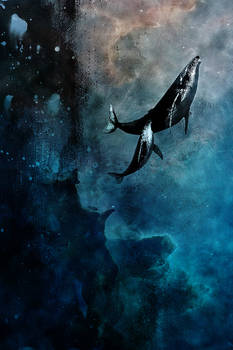 Flying Whales by axcy