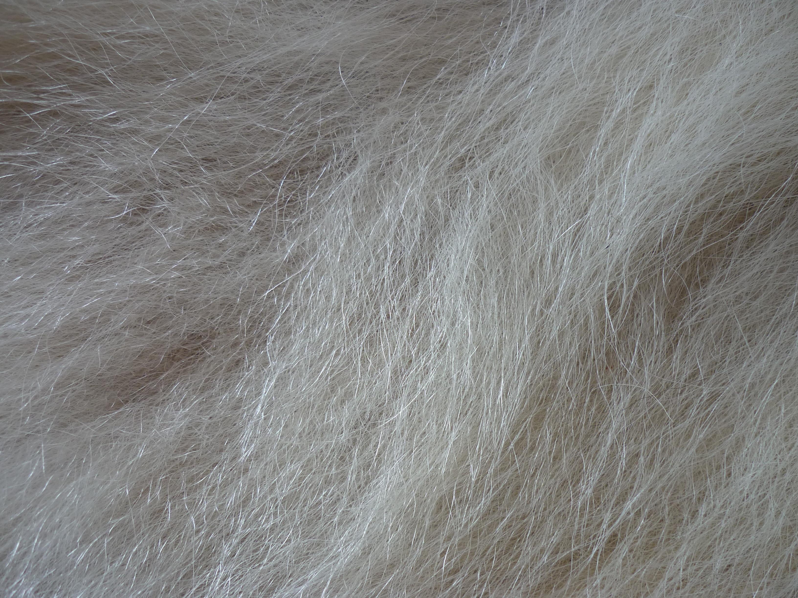 Polar Bear Fur by ennoeaadvent