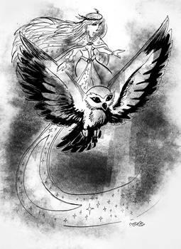 the owl shaman