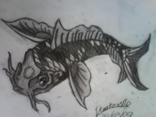 Black koi fish by pankexillo on deviantart for Black koi fish
