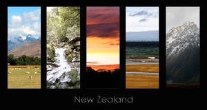 New Zealand RULEZ
