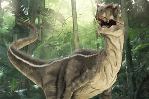 Velociraptor by chris-illustrator