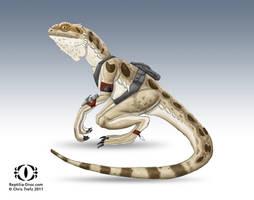 Reptilia Pogona by chris-illustrator