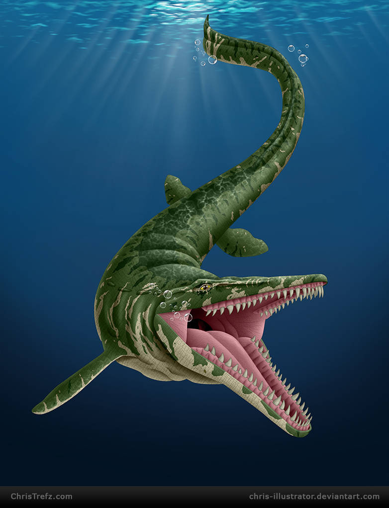 Mosasaur by chris-illustrator