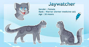 [Commission] Jaywatcher reference sheet
