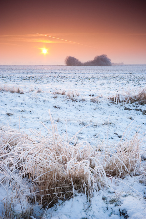 Winter VIII by anoru