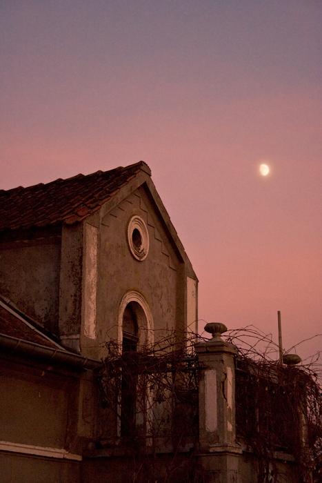 Home by anoru