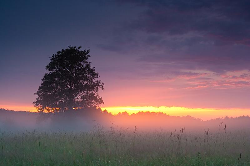 Sunset by anoru