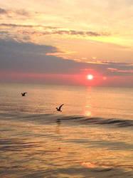 Morning again by Shylah-D