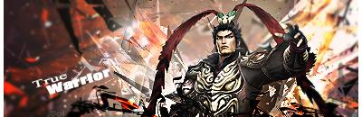 A True Warrior by DarkSol222