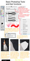 Basic Photoshop Tools Tutorial